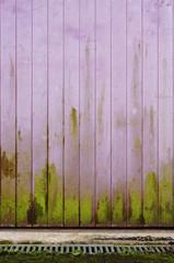 Hintergrund Bretterwand mit Algenbewuchs