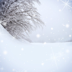 Snow covered tree with sparkle background