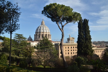 Dai giardini vaticani