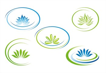 water lily , Buddha , Eco friendly business logo