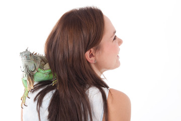 Iguana on the shoulder