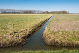Agricultural landscape divided by a narrow stream