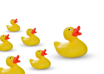 yellow rubber duck and ducklings isolated on white
