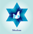 template card with jewish symbols and peace dove - 61442666
