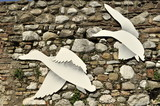 old wall with dove