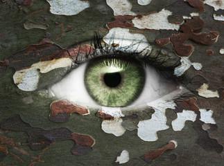 Auge mit Camouflagemuster