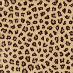 Texture di Leopardo, gheopardo, fondo astratto