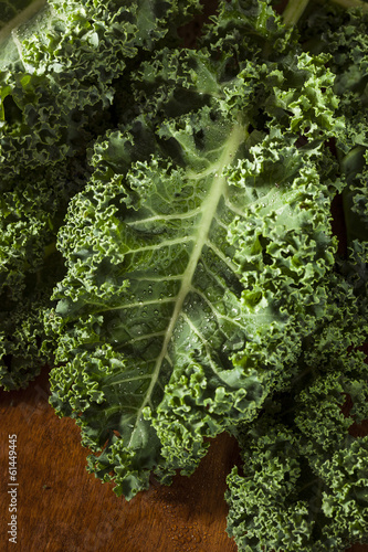 Healthy Raw Green Kale