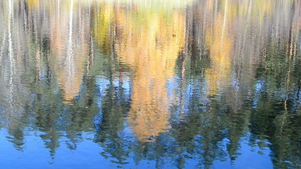 autumn, fal) daylight landscape reflected in water, environment