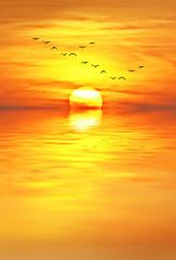 amanece sobre el mar un nuevo dia