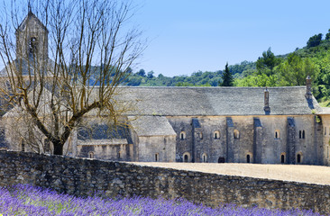 Abbey of Senanque and blooming lavender flowers.Provence,France.