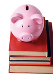 Piggy bank and book in isolated white background
