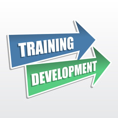 training development in arrows, flat design