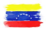 The Venezuelan flag