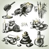 Fototapety Spa sketch icon set. Beauty vintage hand drawn illustrations