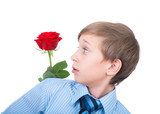 Cute funny boy wearing a tie holding a red rose