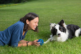 Playing with a border collie