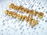 Privacy concept: Golden Software Security on digital background