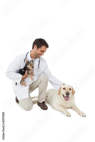 Smiling vet posing with yorkshire terrier and yellow labrador