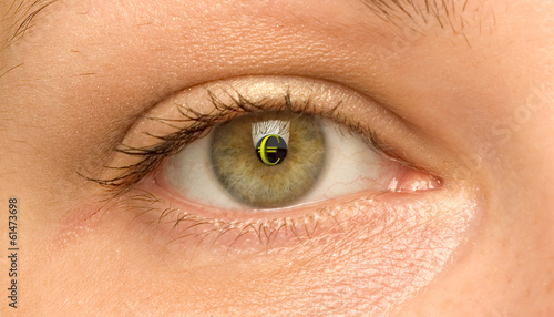woman eye with the symbol of Euro