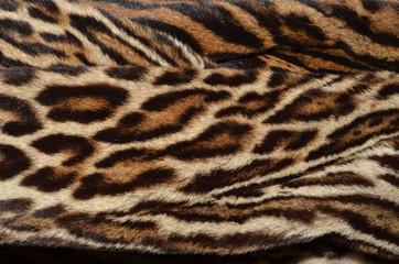 closeup of amur leopard fur background