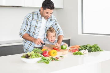 Father teaching his son how to chop vegetables