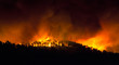 incendio forestal de noche - 61478098
