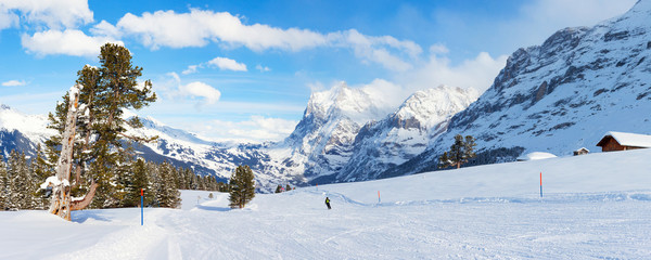 Panoramic Ski Slope in Grindelwald