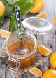 Portion of Tangerine Jam