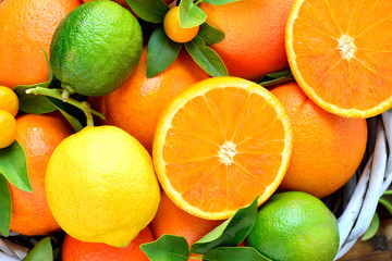 Oranges, lemon,grapefruit, lime, mandarin, kumquats fruits