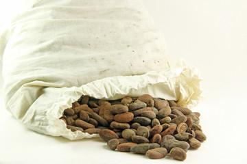 Sacco di fave di cacao