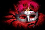 Carnival Mask - 61480218