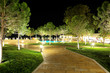 The trees in night illumination at luxury hotel, Halkidiki, Gree