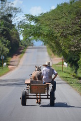 Horse carriage in Vinales, Cuba