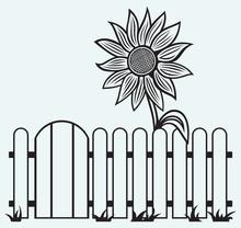 Tournesol et de clôture isolé sur batskground bleu