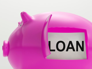 Loan Piggy Bank Means Money Borrowed Or Creditor
