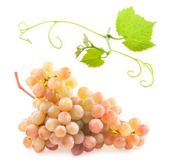 Ripe grape with water drops isolated on white background
