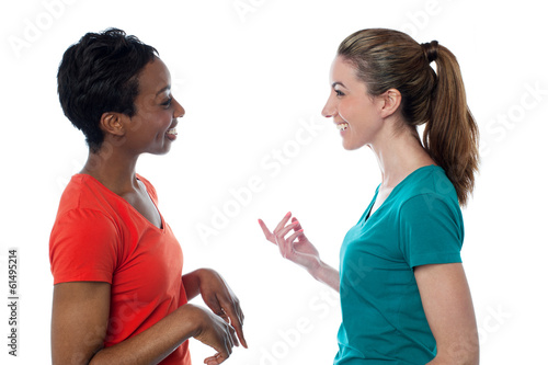 Pretty women having a discussion