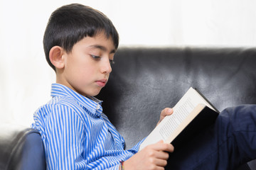 School Boy Reading a book