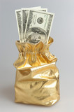 Gold sack full of dollars on gray