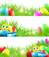 Vector Easter Backgrounds with Chick in Broken Egg and  Grass