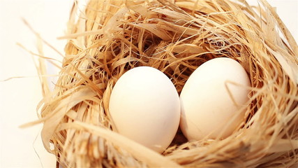 eggs in a nest on white background