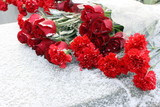Red carnations and roses laid on the war memorial at winter