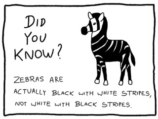 Fun fact - animal trivia