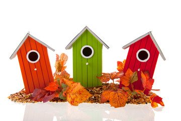 bird houses with seed and leaves