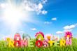Frohe Ostern mit Sonne