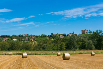 haymaking in italian fields