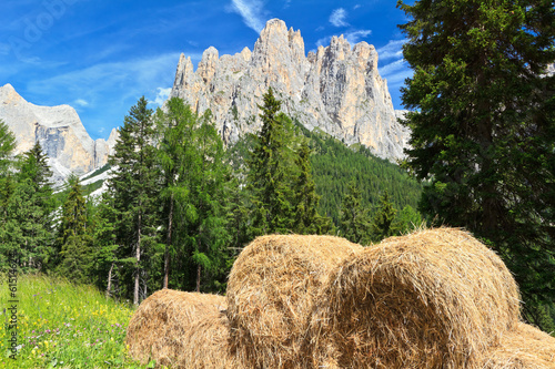Dolomiti - Catinaccio group