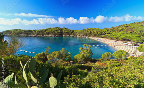 canvas print picture Fetovaia bay - Elba island