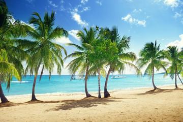 beach of Catalina island in Dominican republic
